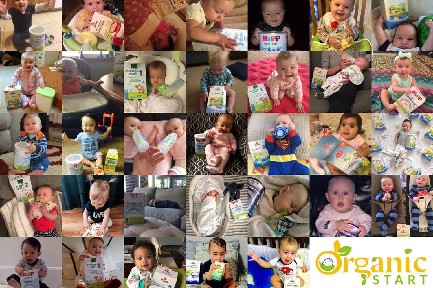 Organic Start Collage