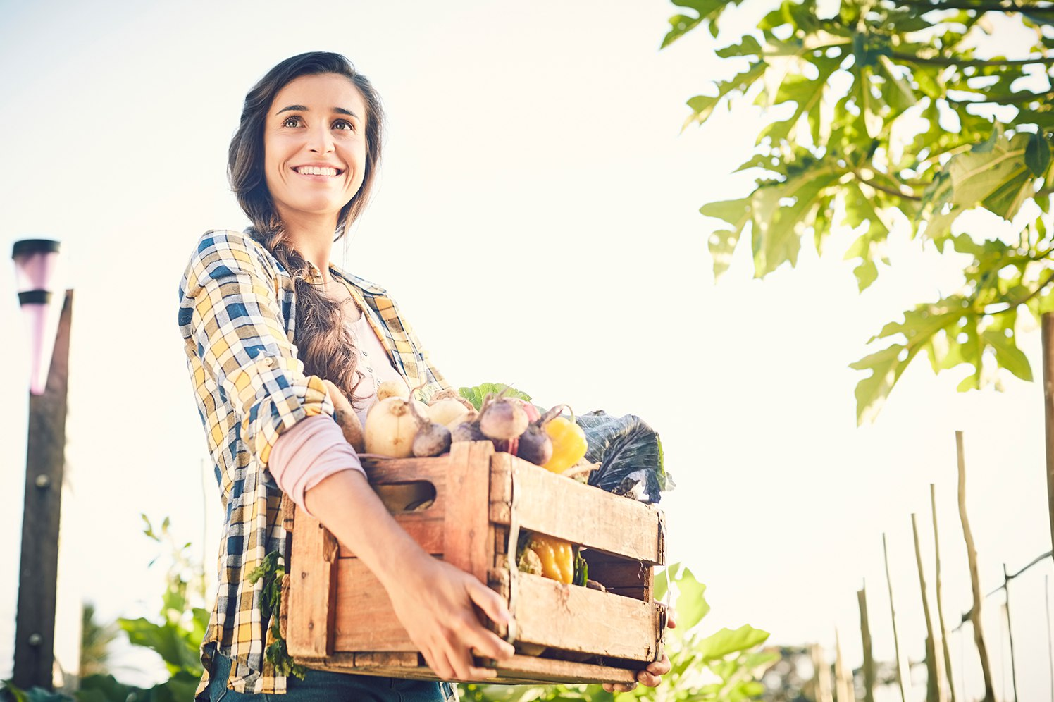 woman with crate of vegetables at farmers market