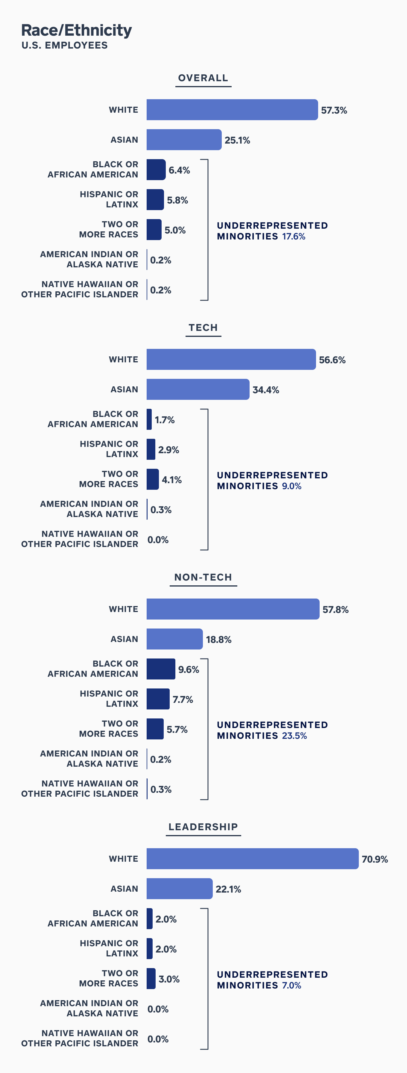 Chart showing employee ethnicity and race breakout