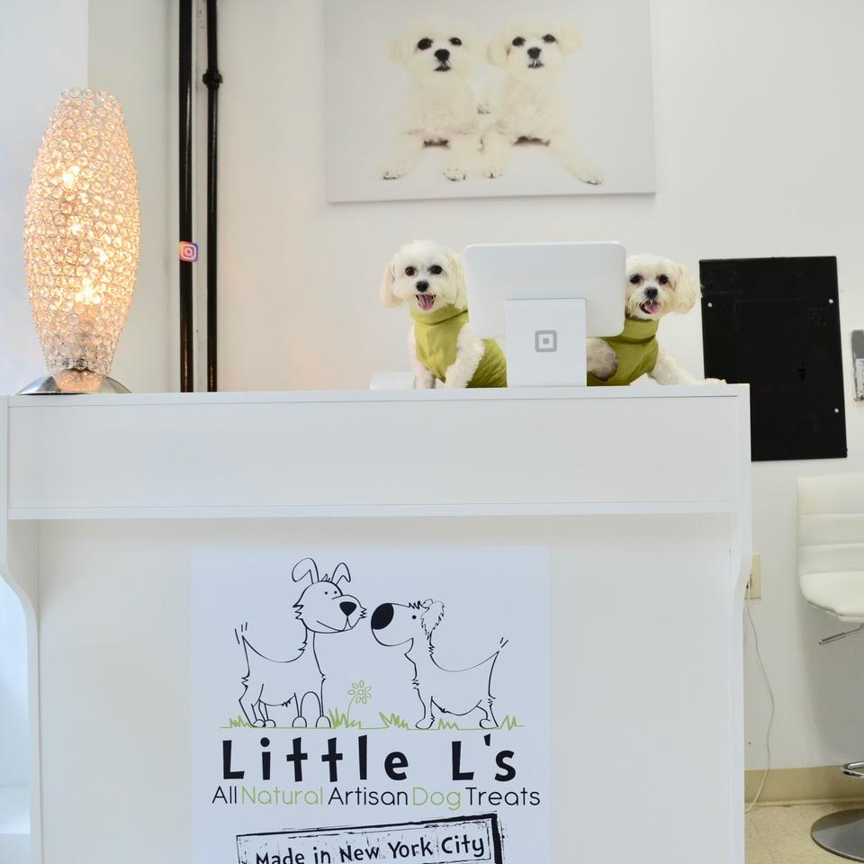 little l's pet boutique